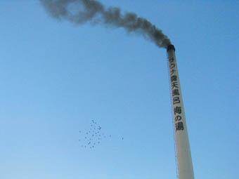 20051230-smoke.jpg