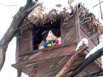 20060123-SNOW04.jpg