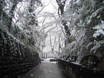20060124-SNOW07.jpg