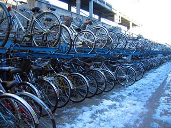 20060130-bicycle.jpg
