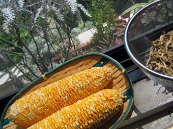 20060830-popcorn.jpg