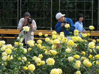 20061023-camaraman.jpg