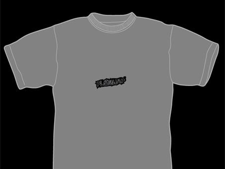 20090203-gray.jpg