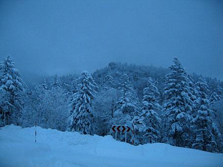 20111219-IMG_2833.jpg