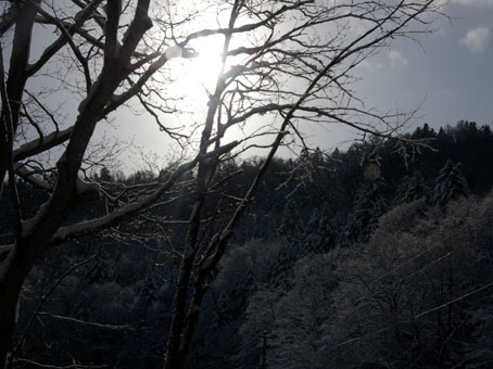 20121129-IMGP7341.jpg